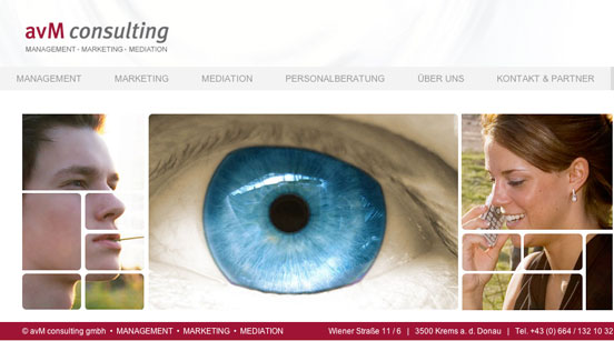 avm-consulting